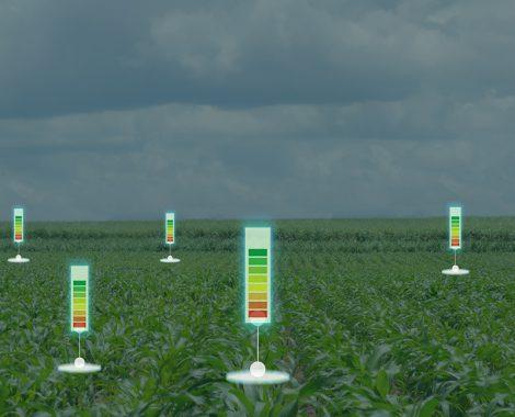 Esquema agricultura de precisión